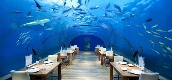 Conrad Maldives Rangali Island Resort2