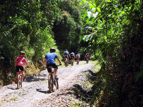 Bike-group-on-track-1000×750