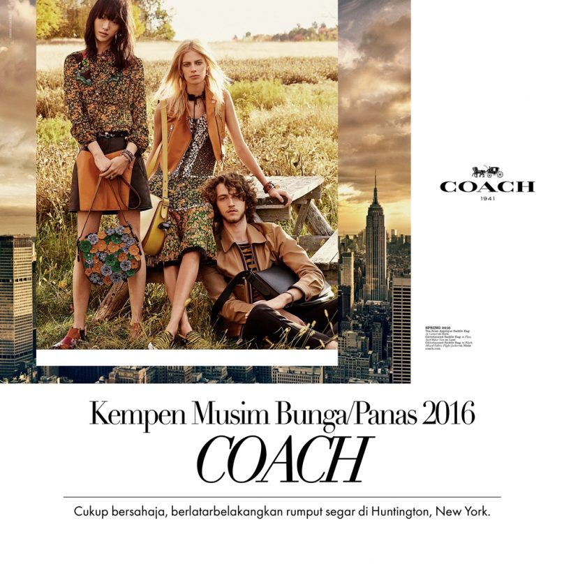 Coach Web Layout
