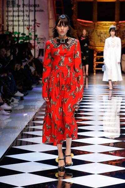 dolce-and-gabbana-fall-winter-2016-17-women-fashion-show-24-1600×2400