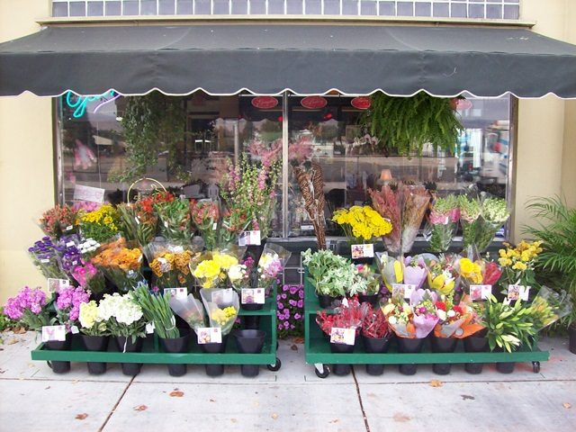 Hadiah Bukan Bunga Ros Untuk Insan Istimewa Dalam Hidup Anda