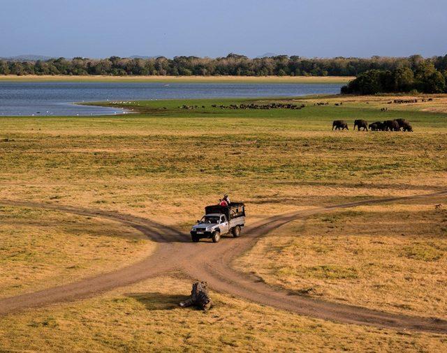 Libur – Kembara Eksotika ke Sri Lanka